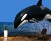 Stunning Orca mural wallpaper kitchen preview