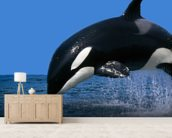 Stunning Orca mural wallpaper living room preview