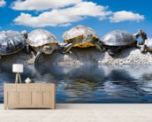 Turtle Meeting wallpaper mural living room preview
