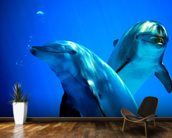 Curious Dolphins mural wallpaper kitchen preview
