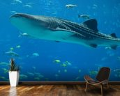 Whale Shark and Fish wall mural kitchen preview