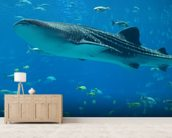 Whale Shark and Fish wall mural living room preview