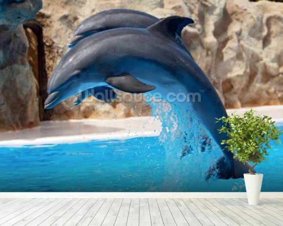 Dolphins wallpaper wall mural wallsauce usa for Dolphins paradise wall mural