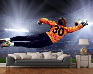 Football Wall Murals football wall murals & sport wallpaper murals | wallsauce usa
