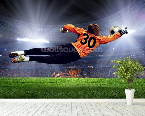 Football Goalkeeper wallpaper mural room setting