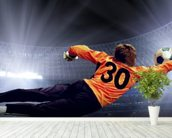 Football Goalkeeper wallpaper mural in-room view