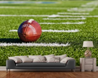 Football Field Wall Mural Part 28