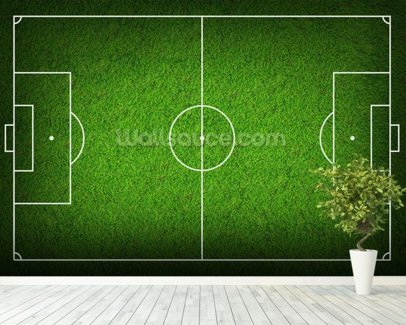 Football Pitch wallpaper mural room setting