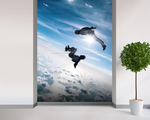 Freefall Skydiving wall mural room setting