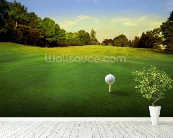 Golf Tee wall mural room setting