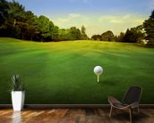 Golf Tee wall mural kitchen preview