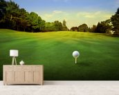 Golf Tee wall mural living room preview