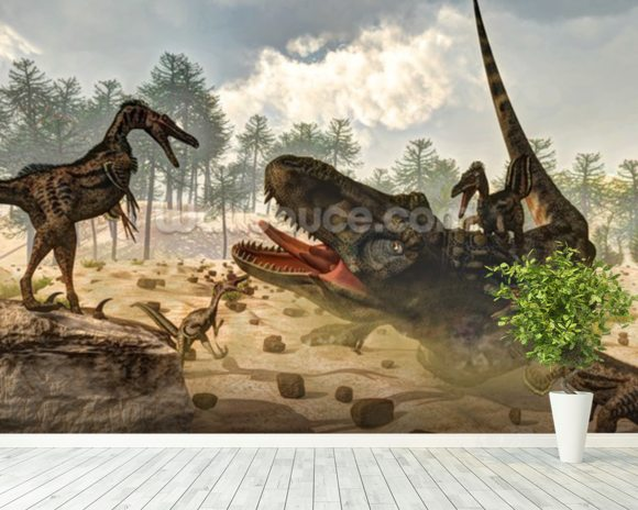 Tarbosaurus Attacked by Velociraptor Dinosaurs mural wallpaper room setting
