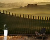 Cypress Shadows wall mural kitchen preview