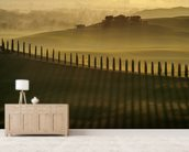 Cypress Shadows wall mural living room preview