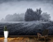 Misty Morning wallpaper mural kitchen preview