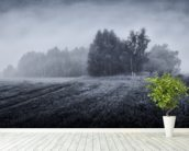 Misty Morning wallpaper mural in-room view