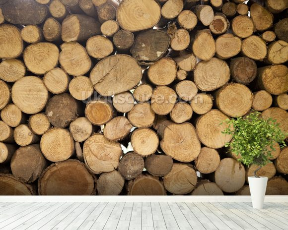 Stack of Logs mural wallpaper room setting
