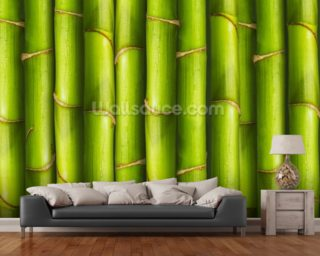 Bamboo - Light Green mural wallpaper
