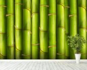 Bamboo - Light Green mural wallpaper in-room view