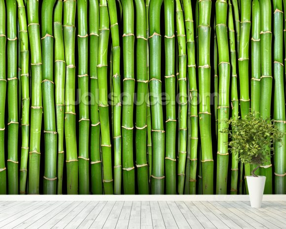 Bamboo wallpaper wall mural wallsauce for Bamboo mural wallpaper