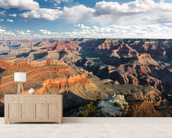 Grand Canyon mural wallpaper living room preview