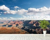 Grand Canyon mural wallpaper in-room view