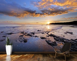 Dorset Coast Wall Mural Wall Murals Wallpaper