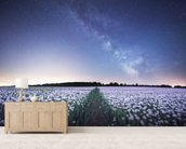 Poppies under the Night Sky wallpaper mural living room preview