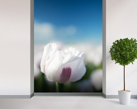 Single Poppy mural wallpaper room setting