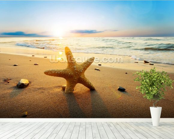 Sunset Starfish wall mural room setting