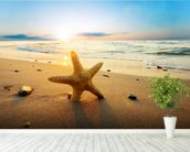 Sunset Starfish wall mural in-room view
