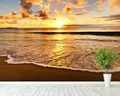 Beach Sunset wallpaper mural in-room view