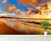 Stunning Sunset Sky wall mural in-room view