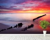 Baltic Sea Sunrise wallpaper mural in-room view