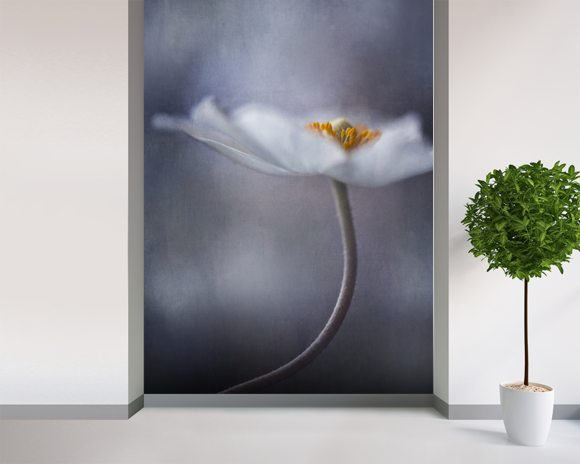 The Beauty Within wall mural room setting
