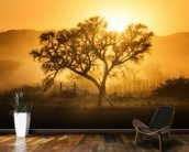 Golden Sunrise wallpaper mural kitchen preview
