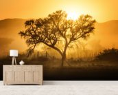 Golden Sunrise wallpaper mural living room preview