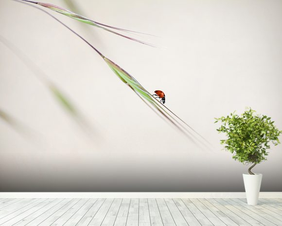 Ladybug mural wallpaper room setting
