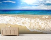 Washed Ashore wall mural living room preview