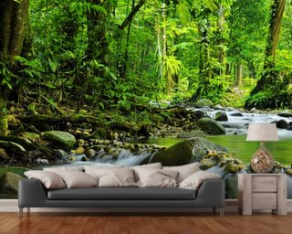 Mountain Stream Wall Mural Part 39