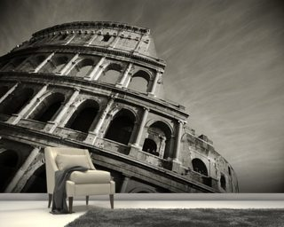 Colosseum - Black and White Mural Wallpaper Wall Murals Wallpaper