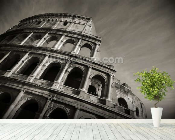 colosseum black and white wall mural colosseum black black amp white wall murals vintage wall murals eazywallz