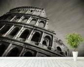 Colosseum - Black and White wall mural in-room view