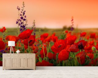Field of Poppies wallpaper mural