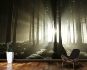 Light and Dark Forest wallpaper mural kitchen preview