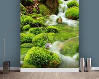 Mountain stream, mossy stones mural wallpaper