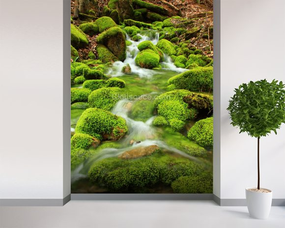 Mountain stream, mossy stones mural wallpaper room setting