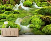 Mountain stream, mossy stones mural wallpaper living room preview