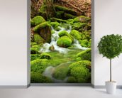 Mountain stream, mossy stones mural wallpaper in-room view